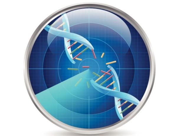 terremoto-cromosoma