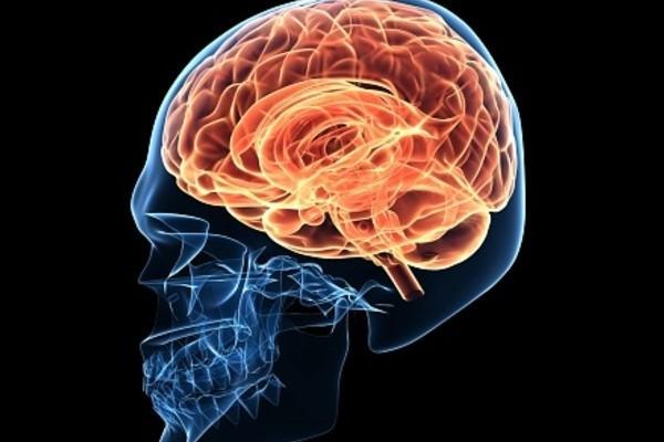 cerebro-placer-dolor
